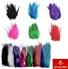 """Pack of 50 4-6"""" 10-14cm Rooster Feathers for Craft Costume Millinery Card Making"""