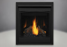 Napoleon B30NTR - Ascent 30 - Direct Vent Gas Fireplace - Top or Rear Vent