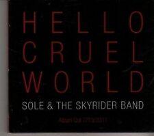 (CR381) Sole & The Skyrider Band, Hello Cruel World - 2011 DJ CD