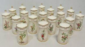 The Flower Fairy Pottery SPICE JARS Set Of 19 1989 Gresham Marketing Ltd - 213