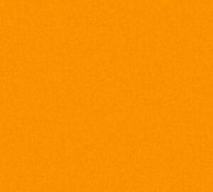 Vliestapete Kinder Uni orange einfarbig Little Stars 35834-6