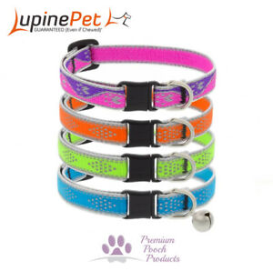 Lupine Pet Cat Collar REFLECTIVE Thread, 12mm W - Safety Release Buckle and Bell