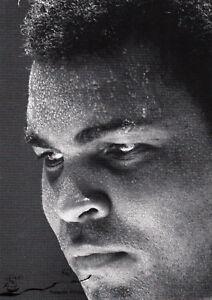 Kunstkarte:   Muhammad Ali