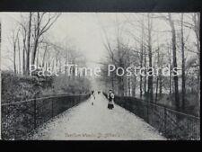 Hertfordshire ST ALBANS Verulam Woods c1913