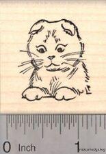 Scottish Fold Kitty Rubber Stamp, Cat D18107 Wm