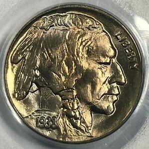 1938-D PCGS MS67 Buffalo Indian Nickel 5c ~ Exceptional Choice BU