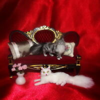 WHITE Cat OOAK Realistic Miniature Dollhouse 1:12 handmade handsculpted IGMA dog