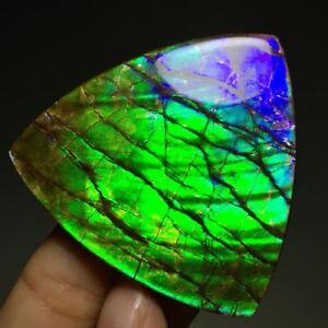 34g Extreme Gorgeous Canadian Ammolite Multicolor Gem Crystal Polishing Specimen