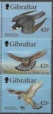 GIBRALTAR 1999 BIRDS of PREY / RAPTORS  MNH FALCONS  (3ALL)