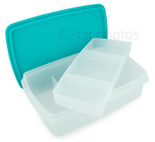 Tupperware Stow N Go (Cash or Tackle Box) with Organization Tray and Seal - NEW!