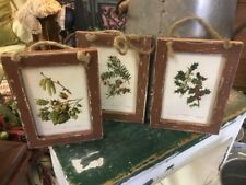 Set Of (3) Boutique- Distressed Pictures-Holly/Yew/Hazel & Catkins-So Charming!!