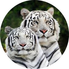 4x4 Spare Wheel Cover 4 x 4 Camper Graphic Sticker Wild Cats bengali Tiger WC1