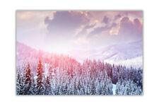 Winter Forest Landscape Wall Prints Poster Art Home Decoration Pictures