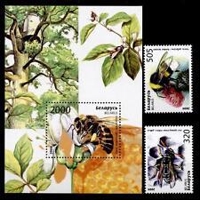 Bienen. 2W + Block. Weißrußland 2004