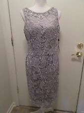 NWT Adrianna Papell  Lavender Jewelry Neckline Lace Dress  Size 10