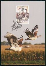 MayfairStamps Czechoslovakia 2011 Drop Fuzaty Bird Fauna Post Card wwk57103