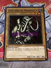 Carte YU GI OH CIMETIERE DE MAMMOUTH YGLD-FRA16 x 3