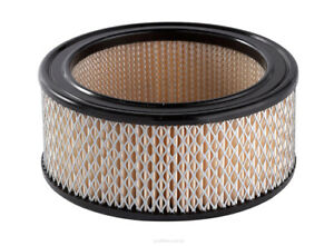 Ryco Air Filter A53 fits Fiat 1000er-Serie 1100