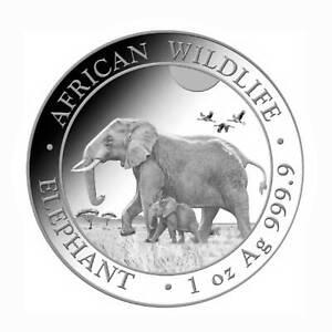 Somalia African Wildlife 100 Shillings Elefant 1 oz .999 Silber 2022 in Münztasc