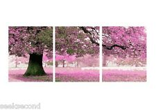 Set of three Framed Painting by Number Kit Cherry Blossoms Park Corner HL18001