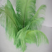 10* Green Ostrich Feathers Real Long 12~14 Inch For Wedding Decorations