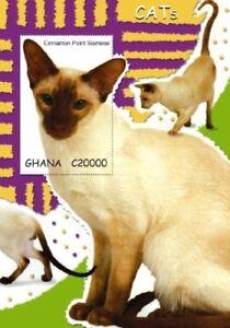 Ghana 2007 - Cats Stamp - Souvenir Sheet - MNH