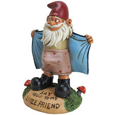 Perverted Garden Gnome Flasher - Funny Novelty - Say Hello to My Little Friend!