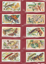 WM. CLARKE & SON - EXTREMELY RARE SET OF 50 BUTTERFLIES & MOTHS CARDS  -  1912