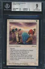 Arabian Nights Camel BGS 9 Graded Magic MTG (0462) -magicgraders-