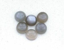 THREE 8mm Round Natural Gray Moonstone Cab Cabochon Gem Stone Gemstone EBS2947