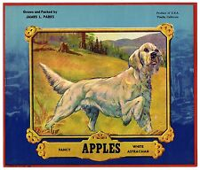 JAMES L. PARKS~POINTER DOG~RARE 1920s VISALIA CALIFORNIA APPLE FRUIT CRATE LABEL