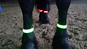 2 LED Nylon Leuchtstreifen, per USB aufladbar, Sicherheit für Pferd u. Reiter