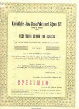 NEDERLAND- JAVA-CHINA--LINE -AANDEEL FL.5250 x 1954 =SPECIMEN = ( de BUSSY)