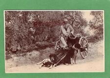 Dog Cart Traveller Gypsy Gipsy ? postmark Hull Yorkshire RP pc 1907 Ref M587