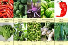 10 Gemüse Samen Set 3, Brokoli,Zuchini,Zwiebel,Melone,Kohlrabi,Rosenkohl !