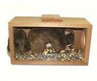 SQUIRRELS  - GIFTS FOR SQUIRREL LOVERS - Munch N'View FEEDERS - SEWF2021