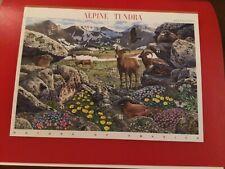 Alpine Tundra, 9th in Nature of America series