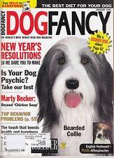 Dog Fancy Magazine 2001 January Bearded Collie English Foxhound Affenpinscher