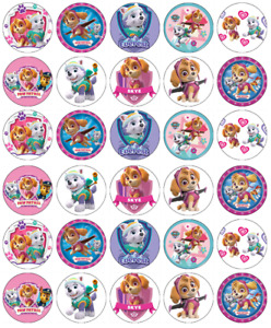 30x Paw Patrol Skye Everest Cupcake Toppers Edible Wafer Fairy Cake Toppers