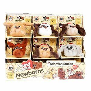 Pound Puppies Newborn