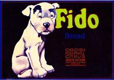 Orosi Tulare County Fido Dog Lemon Citrus Fruit Crate Label Art Print