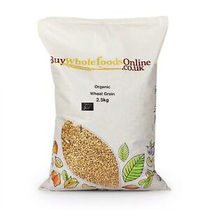 Organic Wheat Grain 2.5kg | Buy Whole Foods Online | Free UK Mainland P&P