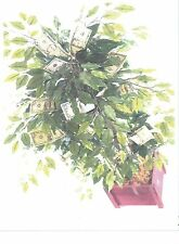 ENCHANTED MONEY TREE---Wicca Magic Ritual---Grow Your Own Real Money Tree