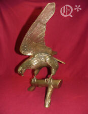 Extra Large Brass Eagle on Branch 26 inch Wingspan