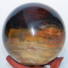 Petrified Wood Quartz Crystal Sphere Mineral Orb Ball w/ Stand - 55mm