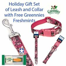 "Big Dog Pink Floral 6 Ft Lead 1"" 18-26"" Collar Gift Set & Free Greenies"