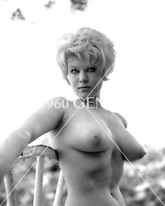 1960s Busty Nude Blonde Terry Terri Higgins Photo-TH7