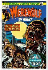 Marvel - Weird Wonder Tales #11 - Hangman - Kane Art - Nm Nov 1973 Vintage Comic