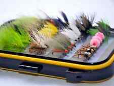36Pieces Dry Fly, Wet Fly and Nymph Fly Lure Assotment + Fly Box for Trout Fly F