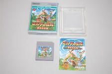 The Legend of Zelda Link's Awaking Japan Nintendo Game Boy Game
